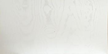 IKEA RÅSDAL Schubladenfront 80x40 in weiß 002.706.57