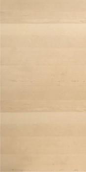 IKEA HAGANÄS Tür Küchenfront 60x120cm birke 502.691.85