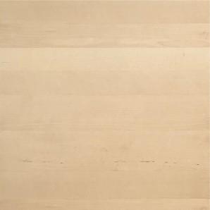 IKEA HAGANÄS Schubladenfront 40x40cm birke 202.691.96